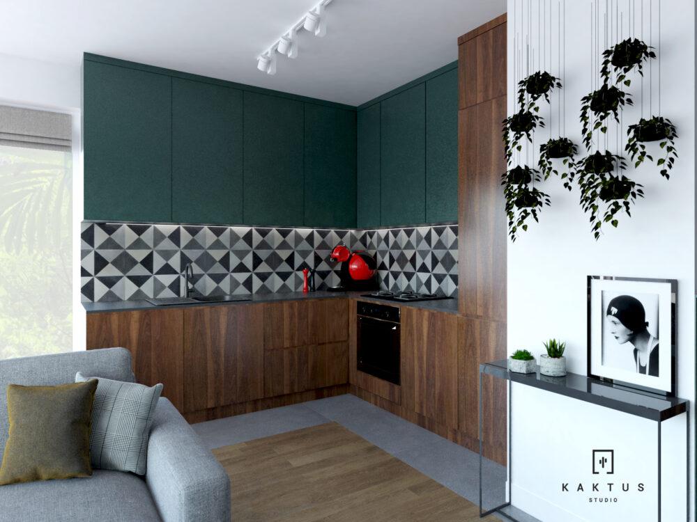 22 salon kuchnia (1)